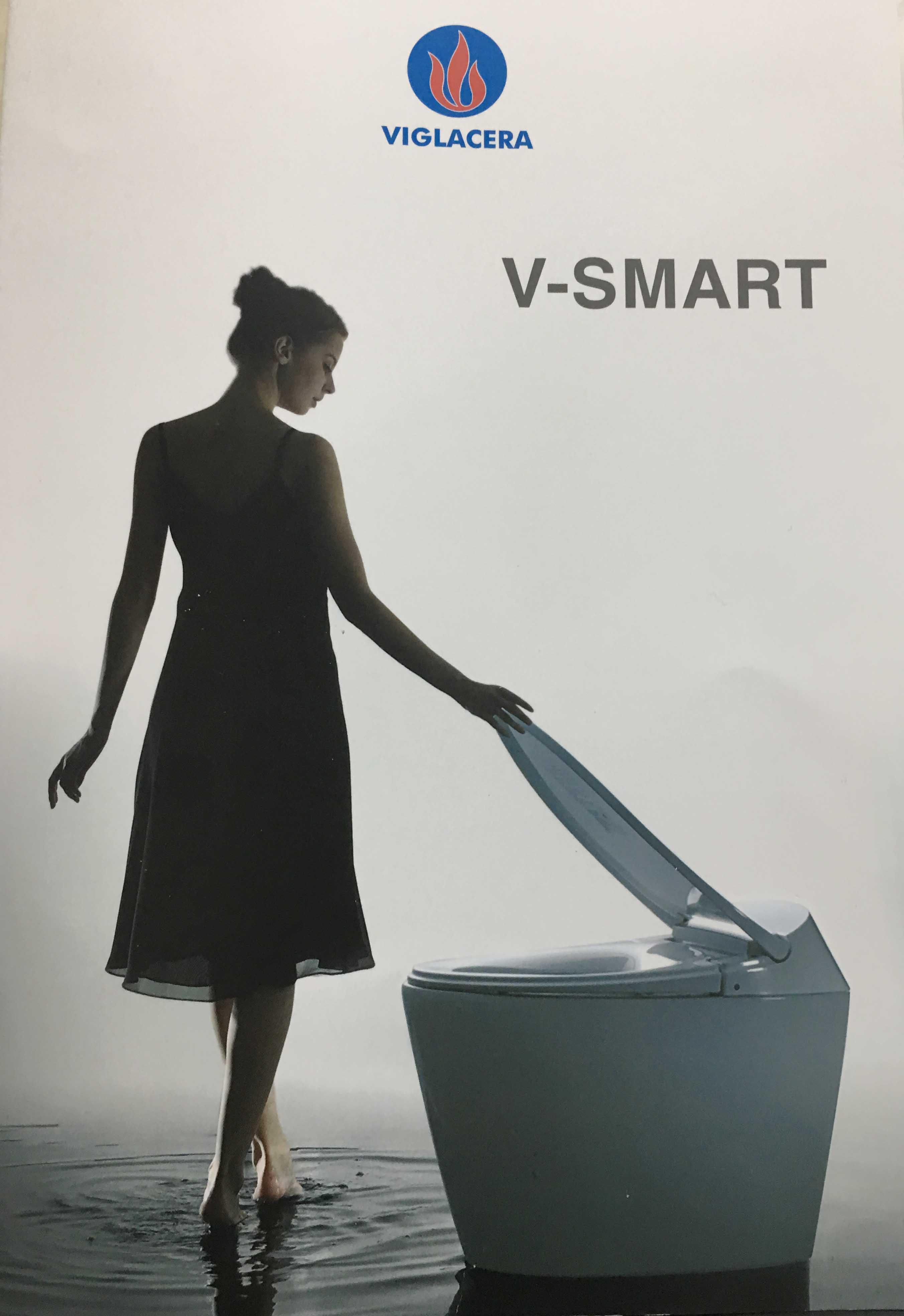 Viglacera V-Smart