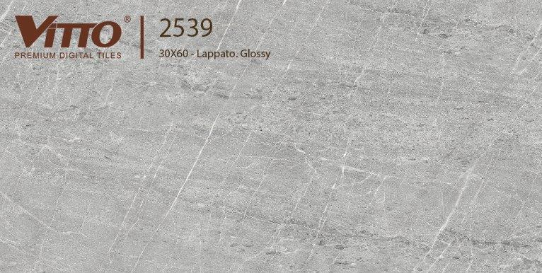 Gạch ốp tường 30x60 Vitto 2539