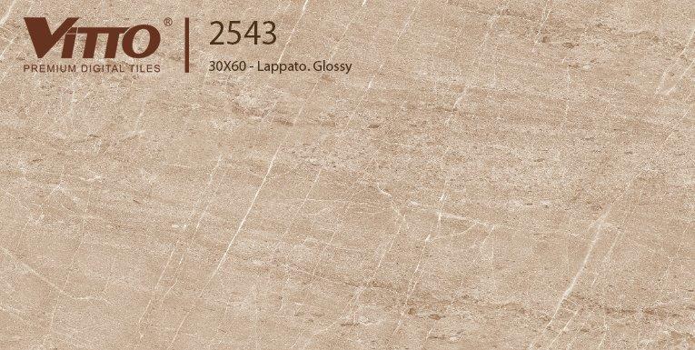 Gạch ốp tường 30x60 Vitto 2543