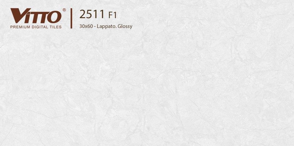 Gạch ốp tường 30x60 Vitto 2511F1